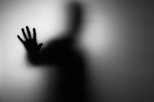 shadow It DSI