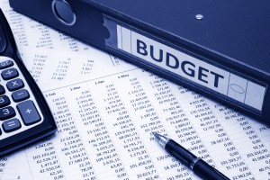 Budget DSI